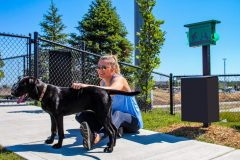 The Pet Waste Station