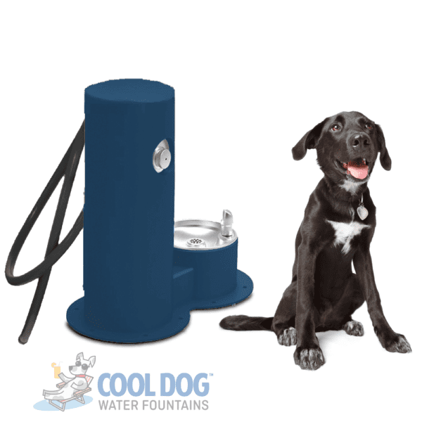 Dog Water Fountains - Drink Wash Cool