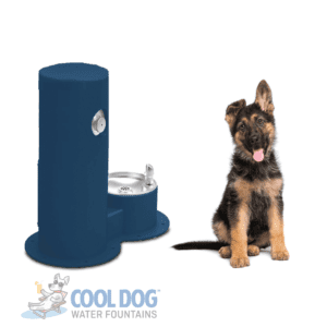 Dog Water Fountains - Drink Cool