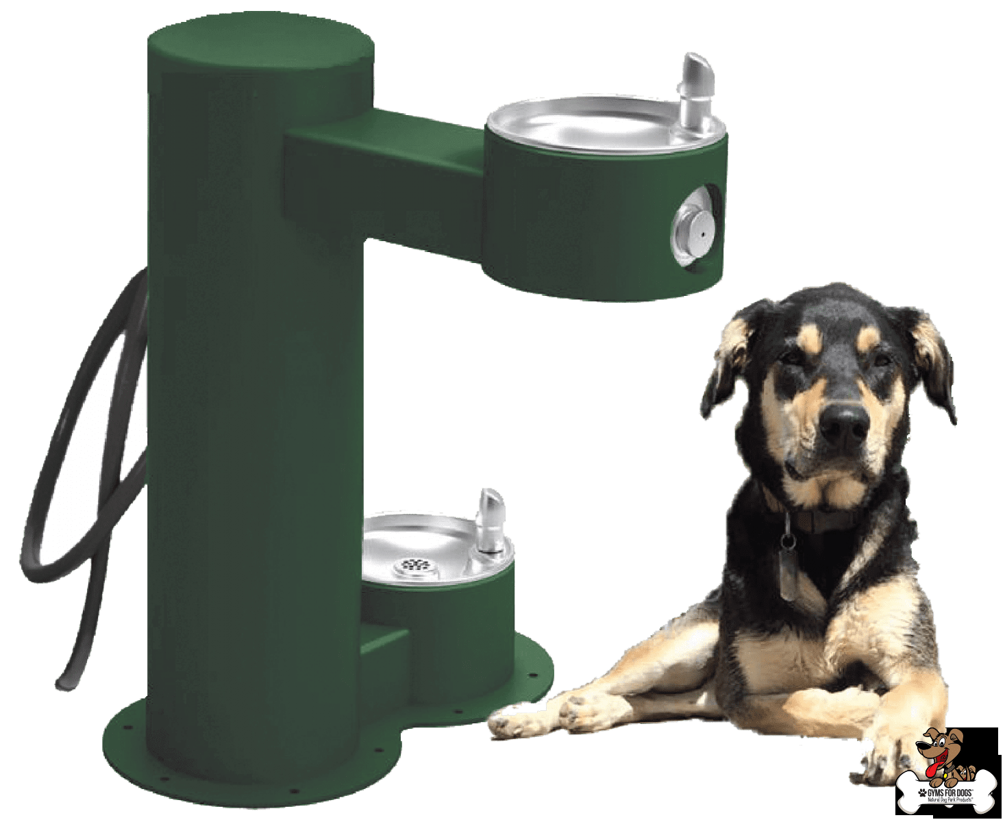 COOL DOG™ WATER FOUNTAIN DRINK, WASH, COOL™ DUAL BASIN