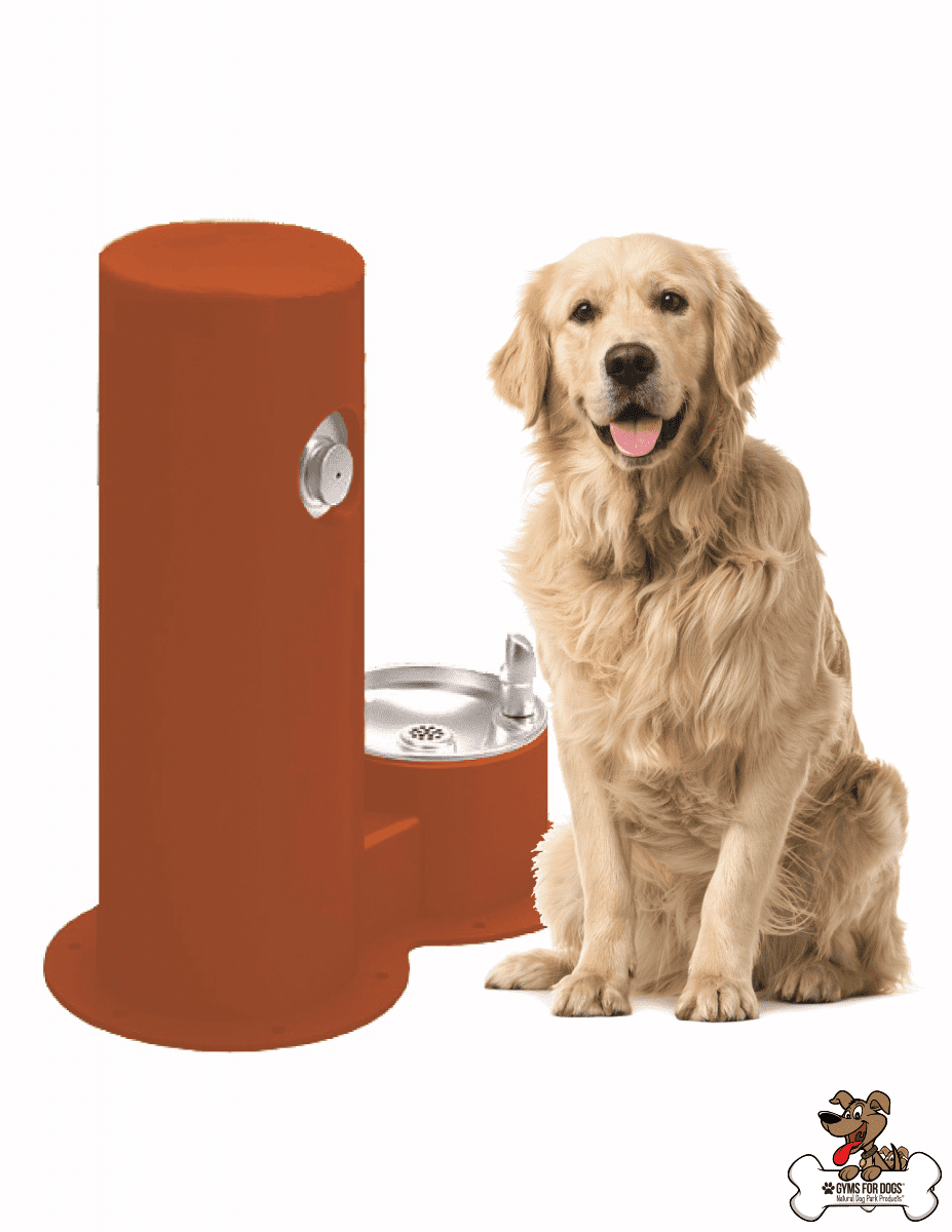 COOL DOG™ WATERFOUNTAIN DRINK, COOL